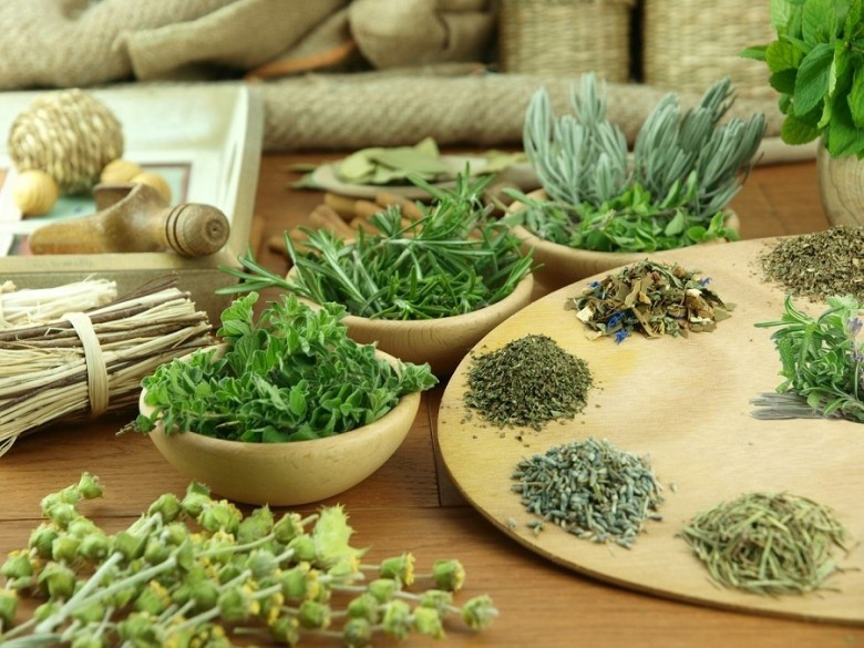 Treating Anxiety with Herbs