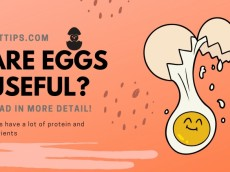 Is it Harmful or Good to Eat Eggs?