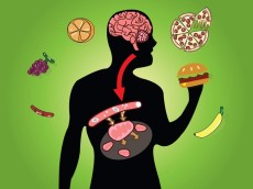 Why do Metabolic Disorders Occur and What to do With Them?