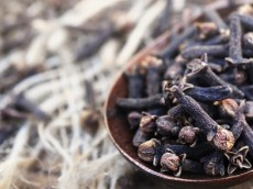Clove the Insignificant Miracle Herb
